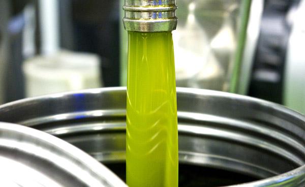 caratteristiche olio del lago di garda